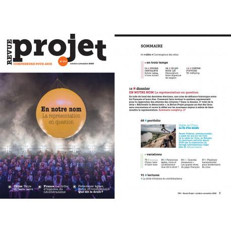 BROCHURE : REVUE PROJET N°378  En notre nom, la représentation en question